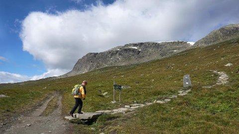 Prestholtstien tar deg opp på Hallingskarvet ved hjelp av 2.500 flotte trappetrinn! På toppen ser du ut over hele Hardangervidda.