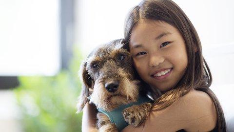 Noen hunderaser er mer krevende enn andre. Riktig valg av hund er viktig for et vellykket hundehold.