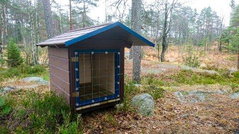 FOR FIRBEINTE: Nå har hytta fått et eget hundehus, slik at gjester også kan ha med hund. På grunn av allergihensyn er det nemlig ikke lov til å ta med hunder inn på hytta.