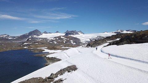 KNALL: Heile sommarsesongen har vore knall på Sognefjellet, trass i rekordlite snø. (Foto: Håvard Nesbø)