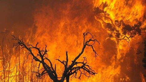 FRYKTEN: Slike branner som dette er det brannvesenet nå frykter i Sola og Rogaland.