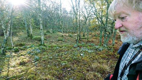 Steinane i bakgrunnen er mest sannsynleg ei gravrøys frå eldre jernalder, fortel arkeolog Olle Hemdorff. (Foto: Reidunn Lea Botnehagen)