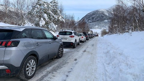 MANGE BILAR: Bilane står parkerte langs vegen nedover mot Liarvatnet.