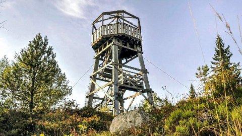 SVELVIKS TAK: Seteråstårnet er så høyt man kan komme i Svelvik, der toppen av tårnet ligger rett i overkant av 400 meter over havet.