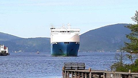 Titt og ofte kommer bilferjene gjennom Svelvikstrømmen, på vei til Drammen havn.