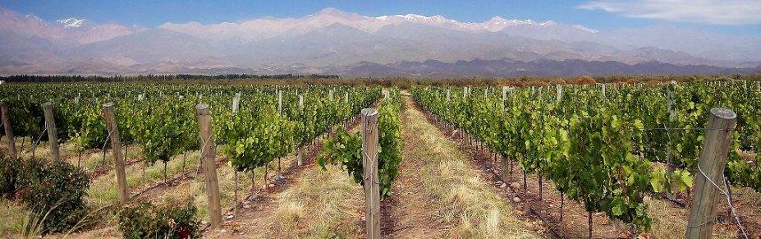 Mendoza, Argentina Foto: Wikipedia