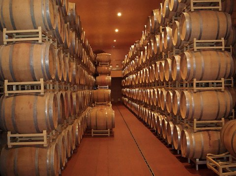 Vinfat i kjelleren på Antinoris Gaudo al Tasso-eiendom
