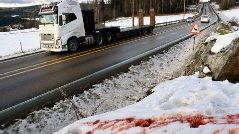 Viltpåkjørsler er et betydelig problem langs norske veier, verst er det på vinteren. Foto: Stein Inge Stølen / NLF.