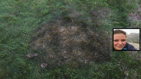 SKREMMENDE: Guro Kvål fra Re fikk seg en sjokk da hun så at gresset under teltet nesten hadde tatt fyr. Foto: Privat
