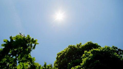 SOMMERVARME: I neste uke kan det bli over 20 grader flere steder i landet. Foto: (NTB scanpix)