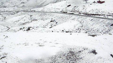 Slik så det ut over Haukeli, torsdag morgen. Foto Statens vegvesen (webkamaera)