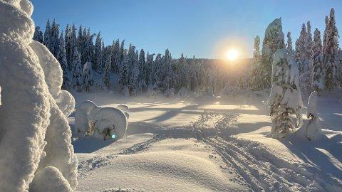 SKIFØRE: Det meldes om fine skiforhold på Svanstul i helgen. Svanstul utvikling oppfordrer imidlertid til å spre trafikken utover dagen.