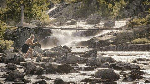 FISKETEKNIKK: Måten Nils Leidal fiska etter bekkeauren på var ein kombinasjon av bading og vassing, og utan klede trong han ikkje stå tørt. FOTO: Torje Bjellaas/NRK