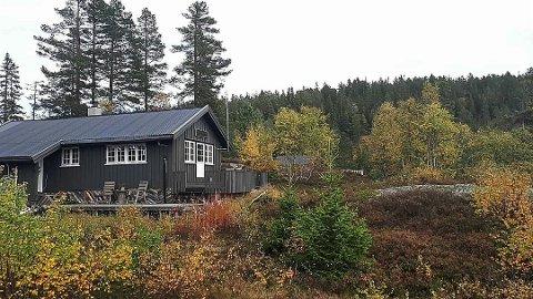 BIRTEDALEN: Denne hytta er til sals i Birtedalen i Fyresdal for 580 000 kroner. Foto: PRIVAT