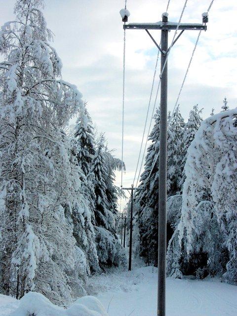 TUNGT: Snøfall gjør strømforsyningen usikker, men med få unntak har Notodden energi sluppet de store bruddene sålangt i år.