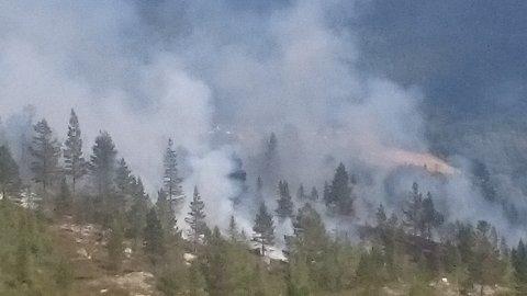 KRAFTIG RØYKUTVIKLING: Bildet viser brannen sydvest for Seterskardshovda i tuddal