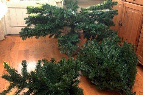 Juletrær i plast pakkes enkelt vekk og kan gjenoppstå neste jul. Foto: Jens O. Kvale, NTB scanpix/ANB