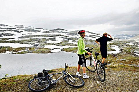 Moderne friluftsaktivitet i form av fjellsykling, blir nå tema i Verneområdestyret for Trollheimen. Gjennom arbeidet med ny forvaltningsplan er det uttrykt bekymring både for fjellsykling og riding i høyfjellet. Illustrasjonsfoto: Sara Johannessen / SCANPIX Foto: Johannessen, Sara