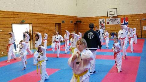 Det ble ei vellykket markeringen av ettårsdagen til Tustna Taekwondo.