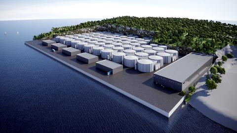 OPPDRETT: Salfjord har satt fart i planene om å bygge et stort landbasert oppdrettsanlegg på Tustna. Anlegget utgjør byggetrinn 2, mens planene på Tjeldbergodden er byggetrinn 1.