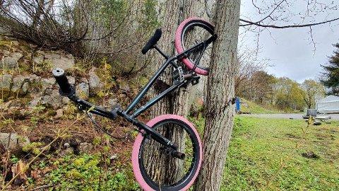 Denne sykkelen er parkert i treet på 17. mai.