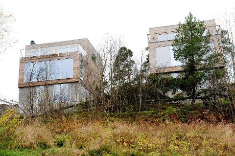 NEDE: Her ligger sameiets trær på bakken, etter at eier av huset til venstre, Ole Christopher Aronsen, innrømmet å ha kuttet dem ned.
