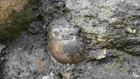 Hodeskallen fra en birkebeiner ble funnet under arkeologiske utgravinger av en gammel brønn på Sverresborg i Trondheim.
