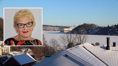 EGEN UTSIKT: Det viktige er ikke min utsikt, men at Tønsberg har politikere som bringer striden om fastlandsforbindelsen til en ende, skriver pensjonist Marit Haukom.