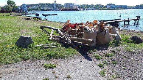 VELFORENINGER: Tønsberg Bydrift er takknemlig for at velforeninger og andre går sammen for å rydde.