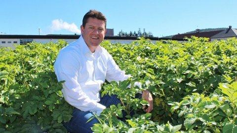 MINDRE SALT: Chris Samways, administrerende direktør i Maarud, sier at de har redusert saltinnholdet i potetgullet over lengre tid. Foto: Privat
