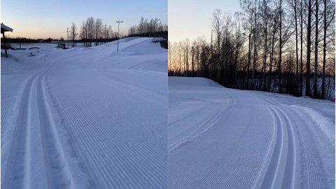 SUPRE FORHOLD: Slik ser skiløypene ut i Våle lørdag 23. januar.