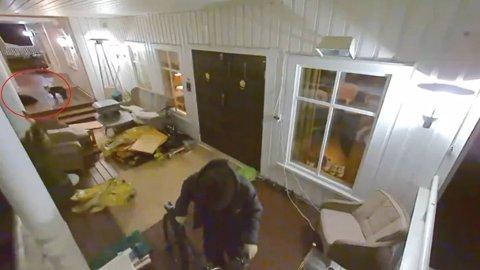 SYKKELTYV: En frekk tjuv stjal natt til fredag en sykkel og en elsparkesykkel utenfor inngangsdøra til Fredrik Holmen (46) i Stjørdal. Det til tross for at to av huset beboere fikk med seg det hele på få meters avstand.
