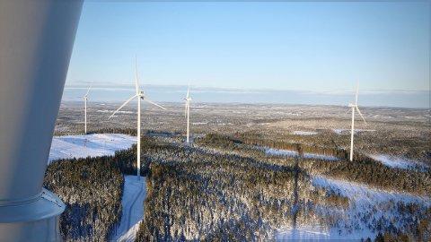 VIL TIL NORGE: Det svenske selskapet Arise har lagt fram planer om å bygge en vindmøllepark i Stjørdal med en investeringsramme på rundt to milliarder kroner.