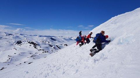 Snøhuler: Gravekonkurranse i snøhuler.