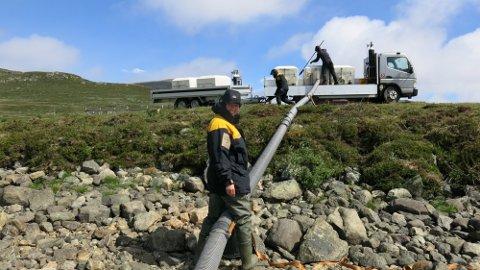 Fiskeslange: Det ble brukt slange rett fra bilen da 12.000 fisk skulle settes ut i Vinstre.