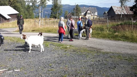 Freding: Oppland fylkeskommune har varsla opptsrat av fredingssak for Breie gard. Etnedal kommunestyre ser positivt på dette.