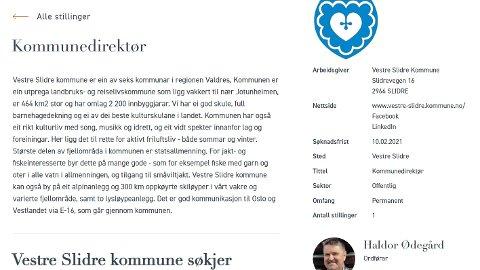 Ny sjef: Det er Skagerak Consulting som har fått i oppdrag å finne ny kommunedirektør i Vestre Slidre.