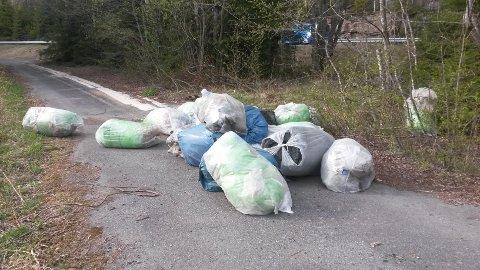 STINKER: Noen har kastet fra seg denne haugen med søppelsekker i krysset Fuglåsveien / Hadelandsveien på grensa mot Lunner. Dette er bare et av mange tilfeller av miljøkriminalitet Mijøhuset Gnisten får melding om i disse dager.