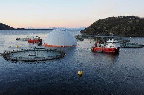 Illustrasjonsfoto: Her er et eksempel på nytenking i oppdrettsnæringen. Aquadomen er 27,7 meter i diameter og 15 meter dyp. Den kan maks romme 200.000 laks.