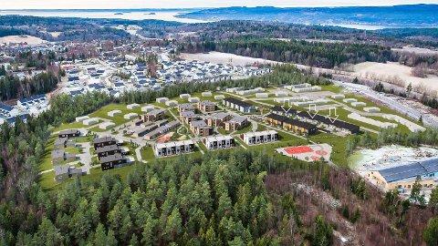 Rundt halvparten av de totalt 225 boenhetene som skal utgjøre Pepperstadkollen er nå solgt og bygget.