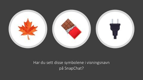 Dette bildet har Nettpatruljen fra Øst politidistrikt brukt for å advare folk om hvordan det kan selges narkotika via kanaler som Snapchat.