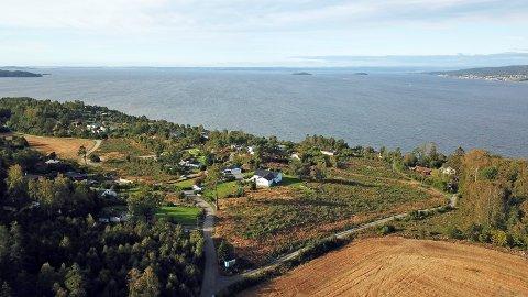 SJØUTSIKT: Alle de 29 hyttene som skal bygges på Hulvika vil få sjøutsikt og gode siktlinjer.