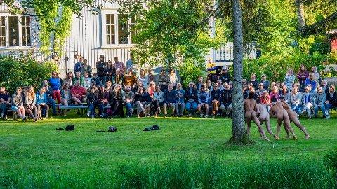 TENKER ALTERNATIVT: Fram til neste års festival, vil gjengen i Sånafest reflektere over hva Sånafest er. Sentralt står kommunikasjonen som oppstår gjennom eksperimenterende språk og uttrykk.