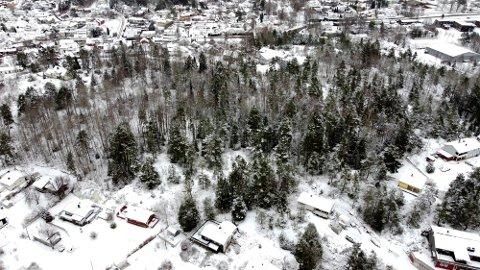Varde Eiendom AS planlegger å bygge 35 boenheter på Alicenborg i Son.