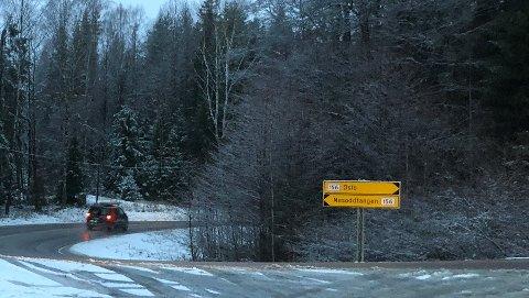 Fylkesvei 156 får beholde sin betegnelse.