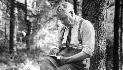 Forfatteren: Sigurd Lybeck fra Oladalen er forfatter. Foto: Sverre A. Børretzen, Aktuell