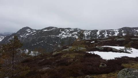 AVHENGIG AV KOMMUNENE: Bergeheia vest for Tonstad vil ikke kunne bygges ut uten at kommunene Sirdal og Lund sier ja til utbygging.