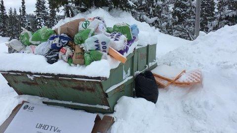 GRISERI: Selv om konteineren ikke var full av søppel, fant mange det lettere å kaste søppelposene på taket av den.
