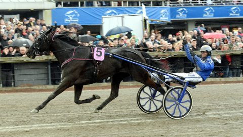 Your Highness vant 1,5 million kroner i grand-Prix. Nå er både seier og premie tapt.