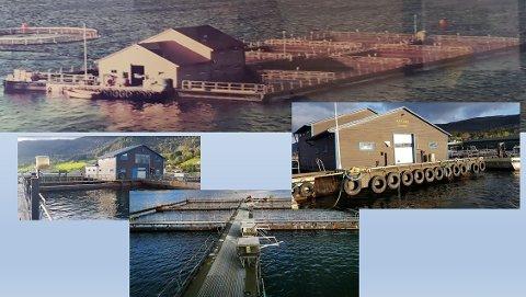 Det er dette oppdrettsanlegget Torblå og Sørum ønsker å gjere til gjestehamn i Odda.